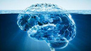 cerveau iceberg